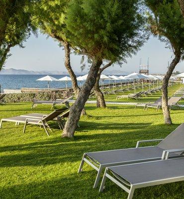 Neptune Hotels - 25 Hotels